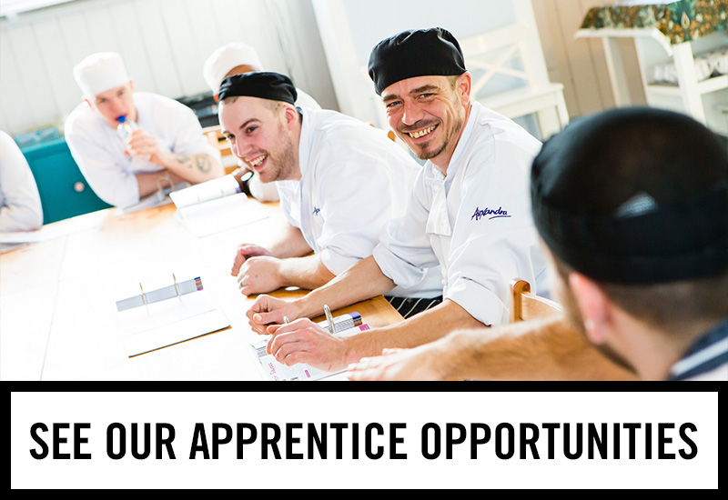 Apprenticeships at Thatched House